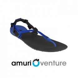 Xero Shoes Barefoot Sandals - Venture, Black + Royal Blue